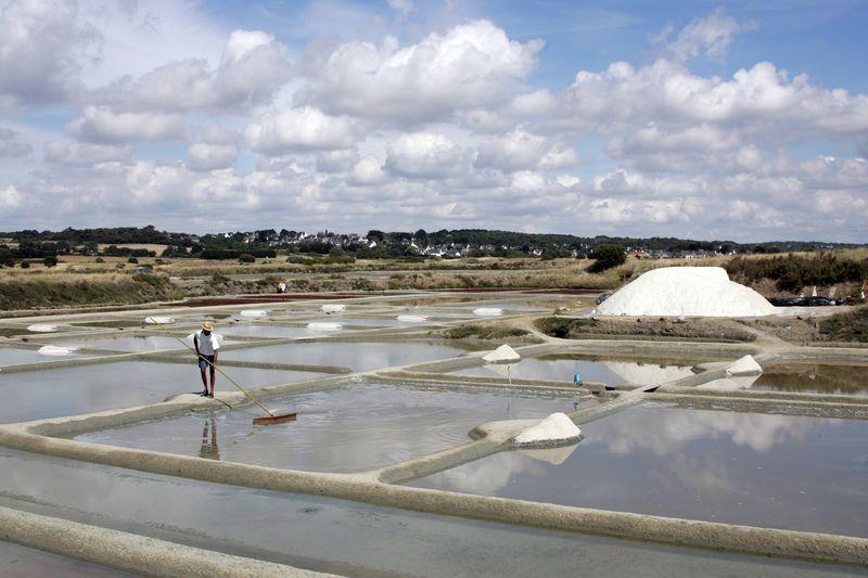 Guerande terre de sel pradel marais salants paludier photo p francois 371976